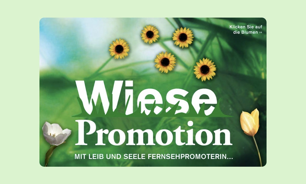 Wiese Promotion